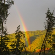 The beginning of a rainbow near some ancient thermal baths, an hour or so outside of Bogota