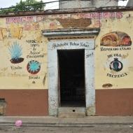 Temazcalaria: Oaxaca
