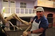 Sweet Gelatin Spinning: Medellin