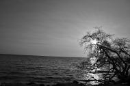 Baru Island: Playa Blanca