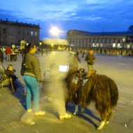 Plaza de Bolivar in Bogota, where you can have your photo taken with a lama.