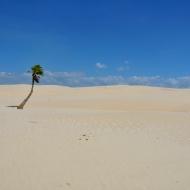 Dunes: Lençóis Maranhanses
