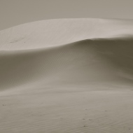 The soft wind scuttles sand across the dunes