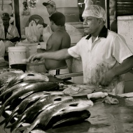 Manaus Fish Market