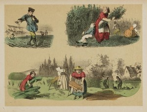 dutch_hemp_farming_hennepakker_prentenboek_kb_1873